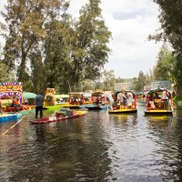 Celebrating my 25th Birthday in Xochimilco - Mexico City